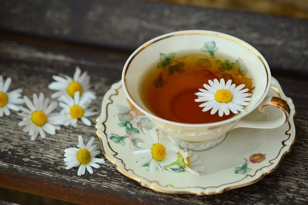cup of tea with a daisy flower