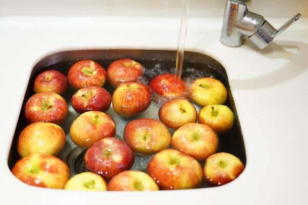apples in a basin of water