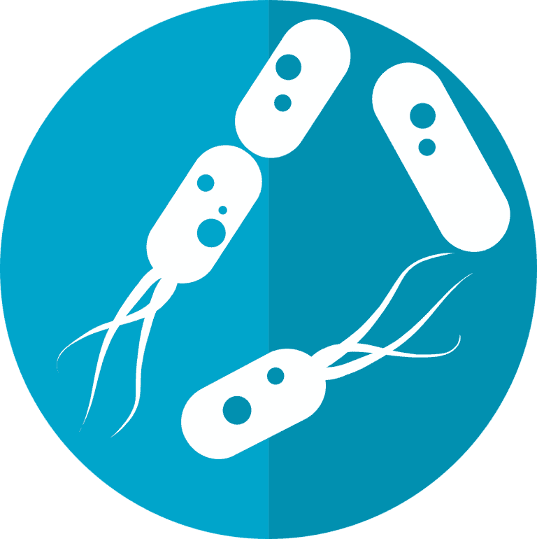 What role does the microbiome play in human health and disease?